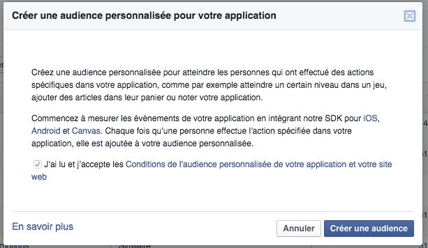 Facebook ads audience personnalisée activité application