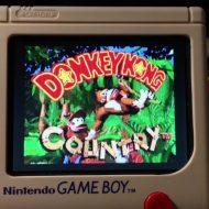 Game Boy Zero Wermy