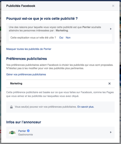 Publicite-Facebook-Perrier-Raisons