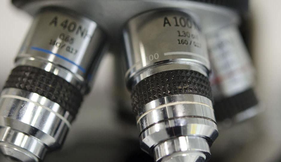 De premières fécondations in vitro avec des embryon génétiquement modifiés en Chine