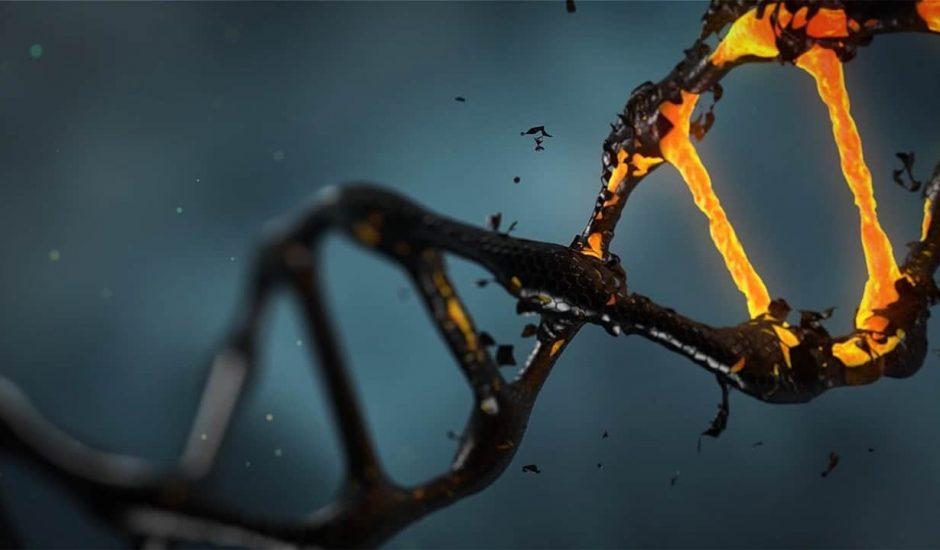 ADN code bitcoin