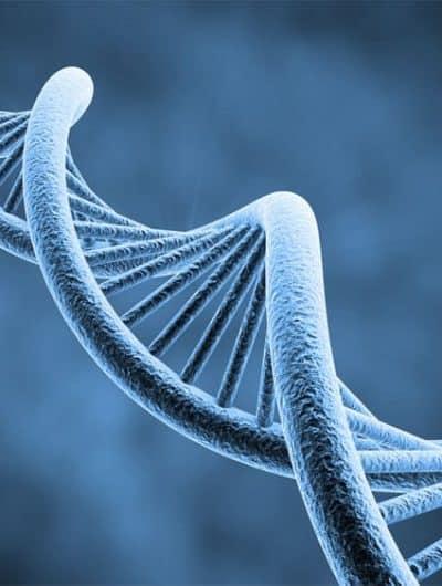 Un test ADN pour détecter plus de 193 maladies dès la naissance. Le FBI obtient l'accès à une gigantesque base de données ADN