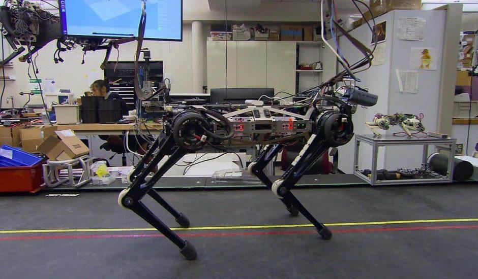 Cheetah 3 : le robot aveugle capable de monter les marches