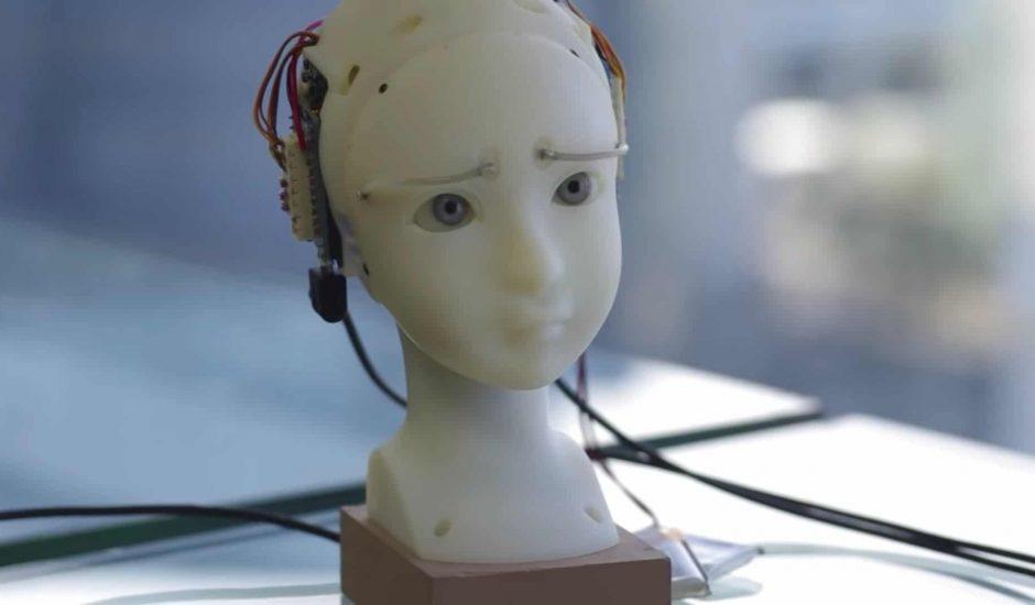 SEER robot