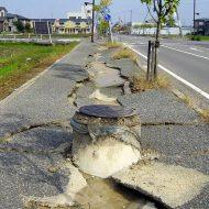 séisme Google Harvard