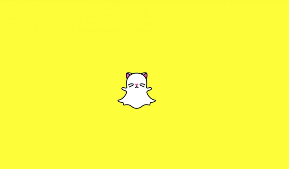 Snapchat Cats Lenses