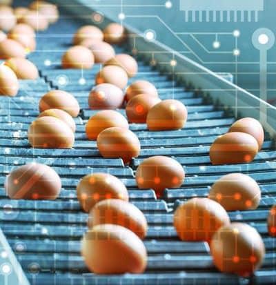 blockchain agroalimentaire