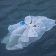 The Ocean Cleanup a pu capturer des déchets plastiques dans le vortex de l'océan Pacifique nord.