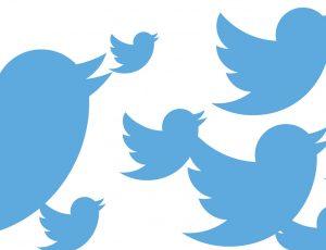 logo de twitter affiché plusiuers fois