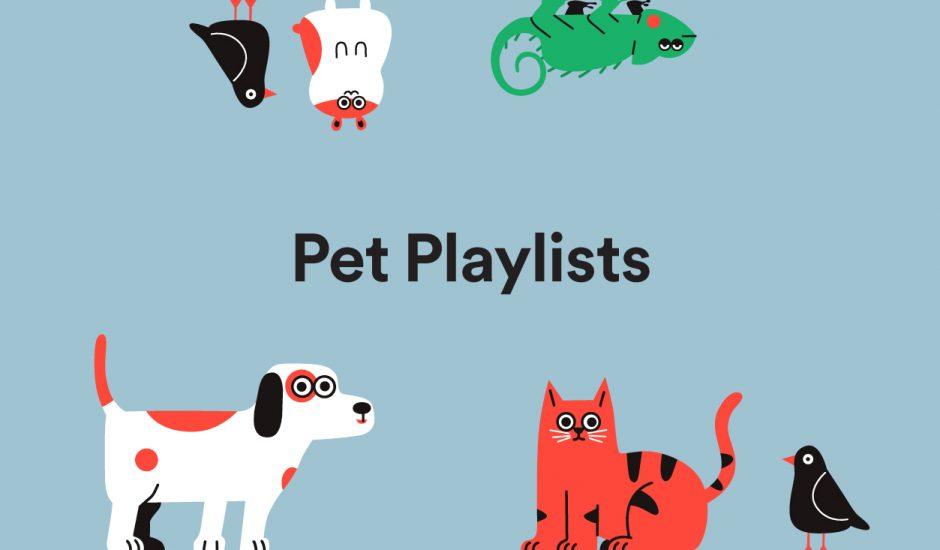 Spotify lance les playlists pour animaux.