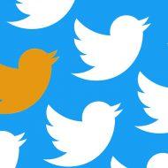 Le logo de Twitter en version blanche et orange
