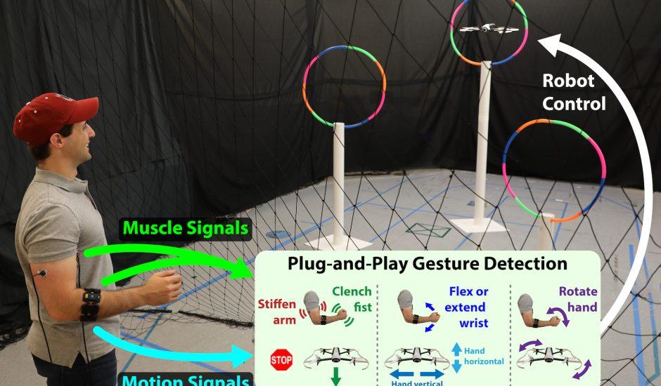 Démonstration du contrôle d'un drone avec un capteur musculaire.