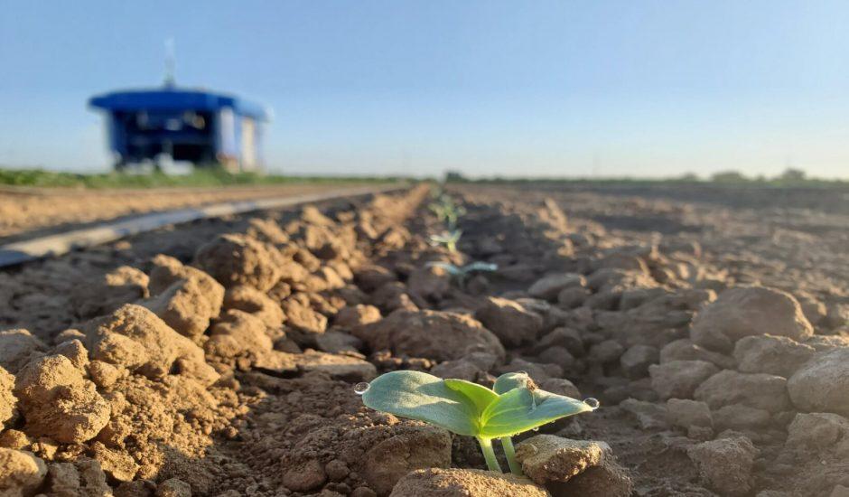 Google Mineral Robot agriculture