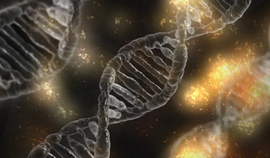 Le séquençage du génome sera bientôt possible grâce à un outil créé par NVIDIA et Harvard qui utilise l'intelligence artificielle.