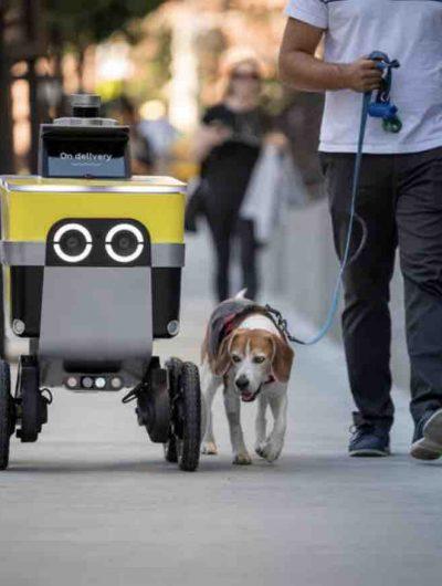 Aperçu d'un robot de Serve Robotics.