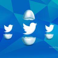 Une illustration des oiseaux Twitter qui sortent de leur coquille.