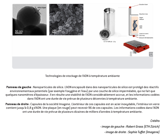 Présentation des technologies de stockage de l'ADN pour des données froides.
