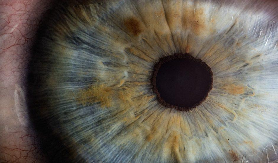 Photographie d'un oeil. Un patient a retrouvé la vue grâce à l'optogénétique.