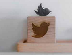 Aperçu du logo Twitter.