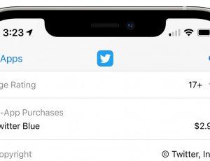 capture d'écran de la mention de twitter blue dans l'app store