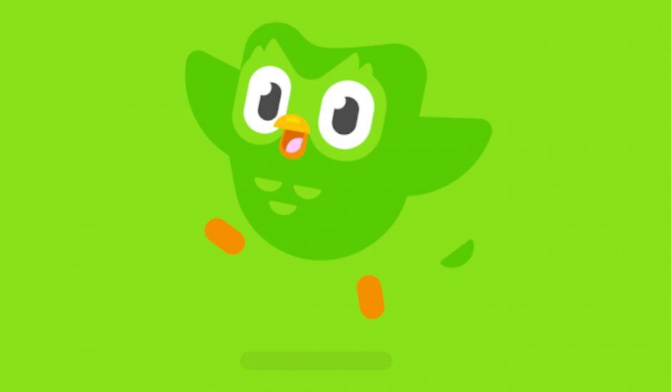 l'oiseau du logo duolingo
