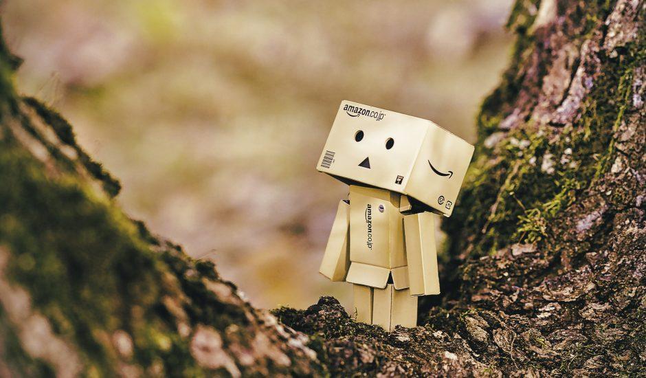 Photographie d'un personnage constitué avec des cartons Amazon.