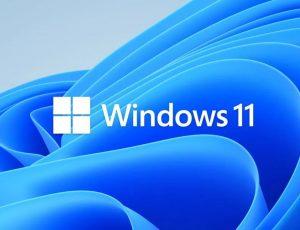 illustration windows 11