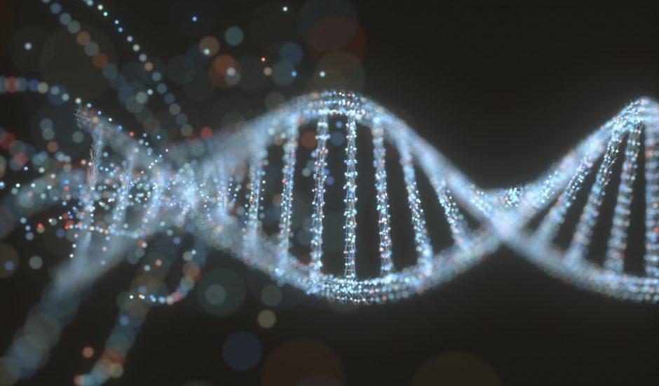 Image d'un brin d'ADN.