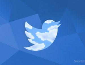 Les abonnements payants sont enfin disponibles sur Twitter.
