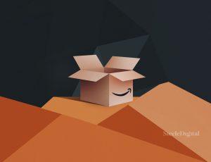 Carton avec logo Amazon