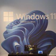 Mur avec le logo Windows 11