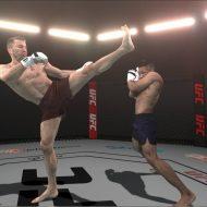 Deux combattants de MMA s'affrontent en 3D.